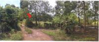 ที่ดินเปล่าหลุดจำนอง ธ.ธนาคารกรุงไทย อุบลราชธานี น้ำยืน ยางใหญ่